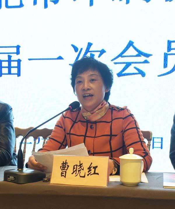 合肥市民政局民间组织管理处处长张健正在会上作重要讲话2